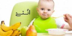 غذاء الطفل في الشهر العاشر