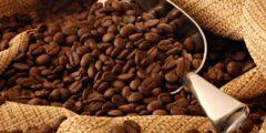 مكونات تحويجة القهوة : بهارات القهوة السبعة : أفضل خلطة للقهوة التركية