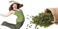 فوائد القهوة الخضراء للتنحيف : هل القهوة الخضراء تنحف الجسم؟