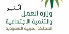 رابط الاستعلام عن موظف سعودي الاستعلامات الإلكترونية